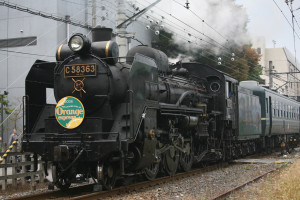 Steam Locomotive - The Paleo Express