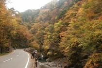 奥秩父大滝 中津峡